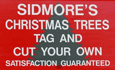 Sidmore Christmas Tree Farm