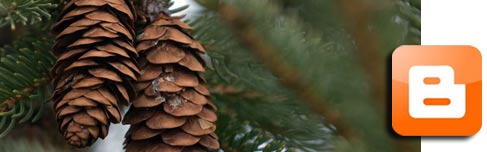Christmas Tree News at NHCT blog