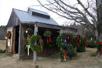 neva dun farm christmas trees wreaths at neva dun farm christmas trees - Christmas Tree Farms For Sale